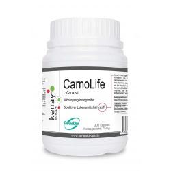 CarnoLife® L-Carnosin (300 Kapseln) - Nahrungsergänzungsmittel