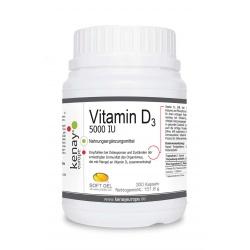 Vitamin D 5000 IU 300 Kapseln