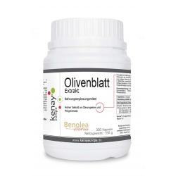 Olivenblatt Extrakt (300 Kapseln)-Nahrungsergänzungsmittel