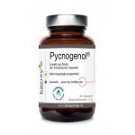 Pycnogenol ® Extrakt aus Rinde der französischen Seekiefer (30 Kapseln) - Nahrungsergänzungsmittell