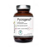Pycnogenol ® Extrakt aus Rinde der französischen Seekiefer (60 Kapseln) - Nahrungsergänzungsmittell