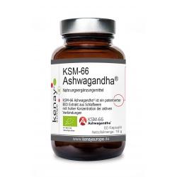 KSM-66 ASHWAGANDHA® (60 Kapseln) – Nahrungsergänzungsmittel