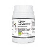KSM-66 ASHWAGANDHA® (300 Kapseln) – Nahrungsergänzungsmittel