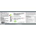 Resveratrol PT (30 Kapseln vege) - Nahrungsergänzungsmittel