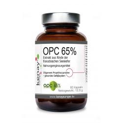 OPC 65% Extrakt aus Rinde der französischen Seekiefer (60 Kapseln)-Nahrungsergänzungsmittel