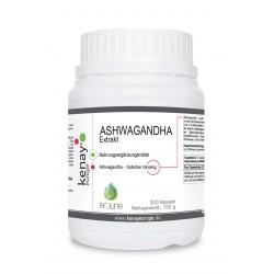 ASHWAGANDHA - Extrakt (300 Kapseln) - Nahrungsergänzungsmittel